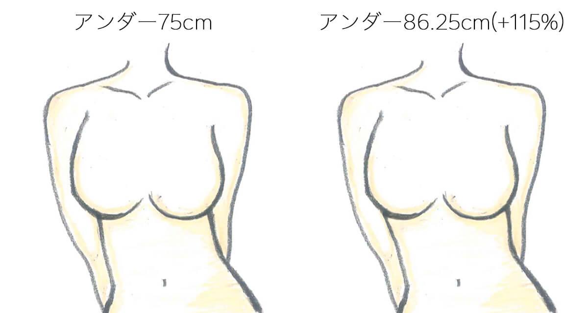 左側にアンダーバスト75cmの女性、右側にアンダーバスト86.25cmの女性を描いたイラスト
